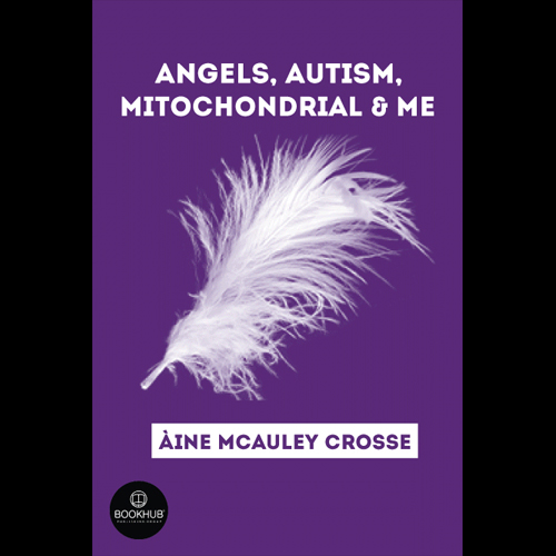 Angels, Autism, Mitochondrial & Me